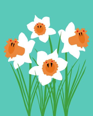 Spooky Daffodils