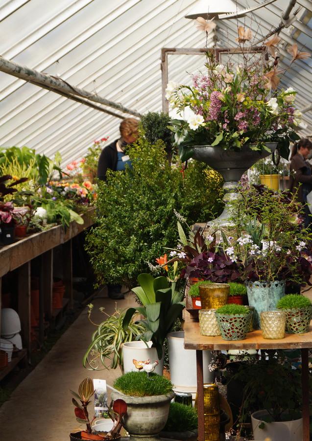 Handelsträdgården