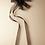 Thumbnail: Horsehair Ribbon Sash