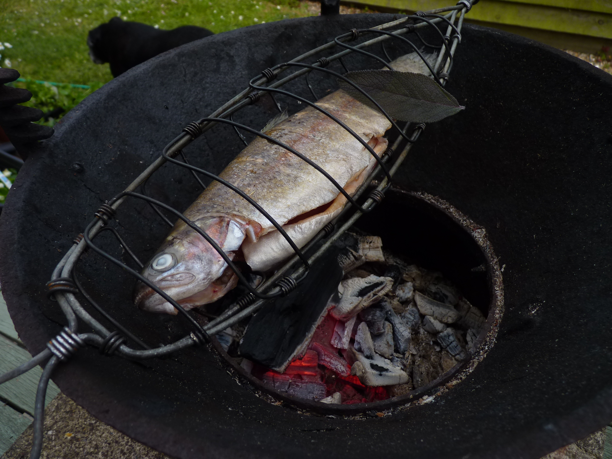 X Barbeque fish griller.JPG