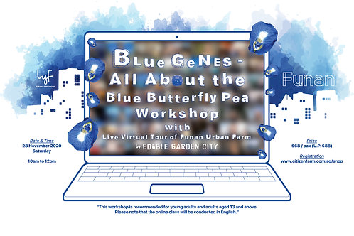BLue GeNEs - All About the Blue Butterfly Pea Workshop (28.11.20)