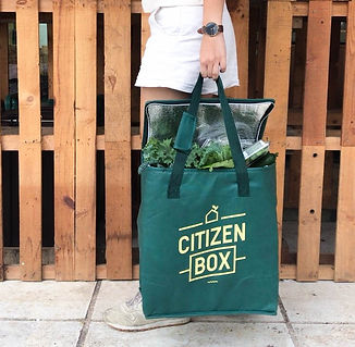 Citizen Box with carrier.jpg