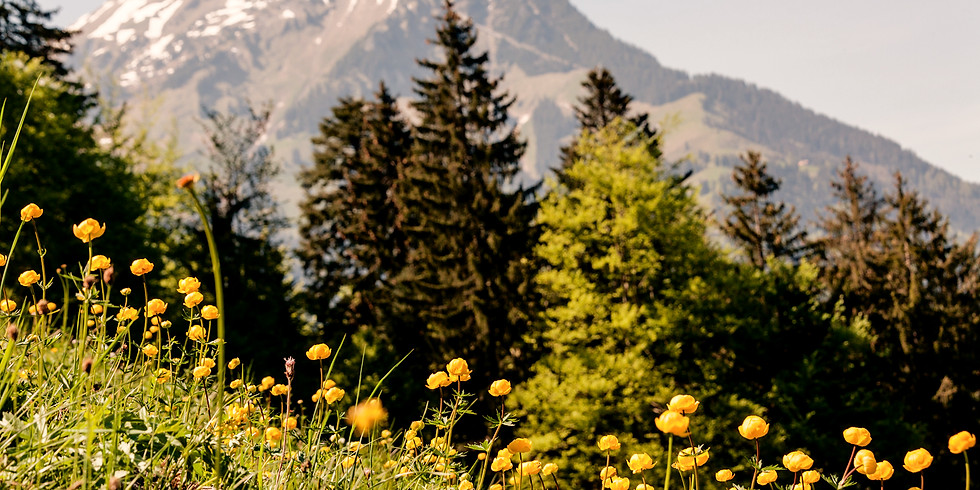 Yoga & Meditation Wochenende Retreat im Berner Oberland *NEUES DATUM*