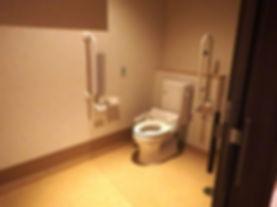 ウェルハート阿賀野トイレ.jpg