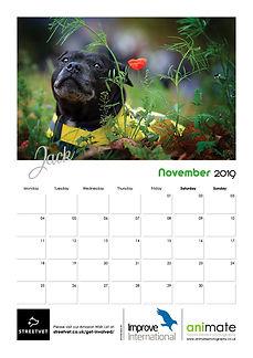 StreetVet Calendar V412.jpg