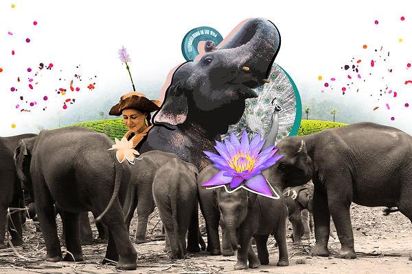 SriLankaWeb.jpg