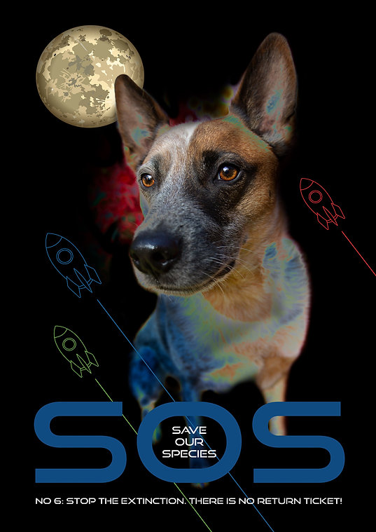 SOS3.jpg