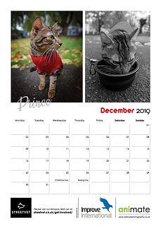 StreetVet Calendar V413.jpg