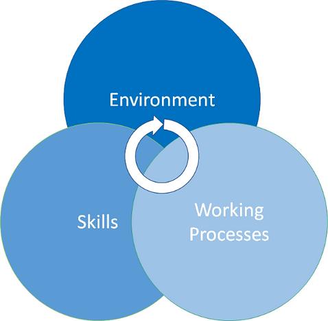 enviroment, Skills, Working processes