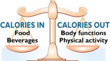 Metabolism and Weight Management