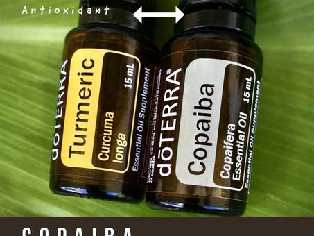 Anti-Inflammatory Dynaic Duo
