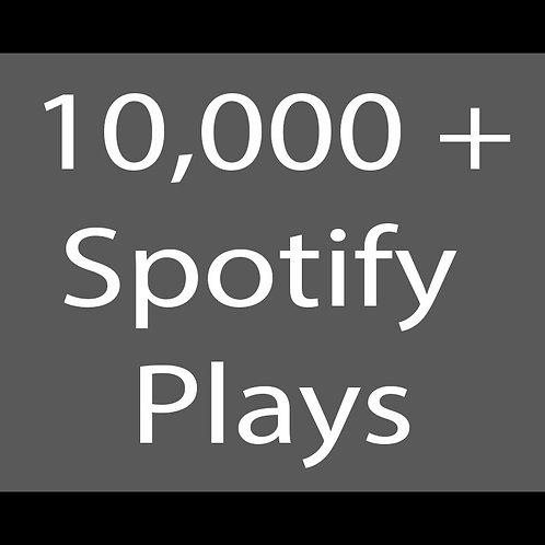 10,000 Spotify Premium USA plays