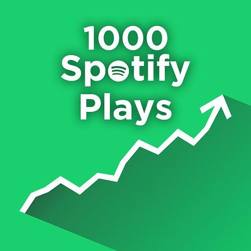 1,000 USA Spotify Premium Streams Royalties Eligible