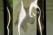 mini concorso-copia cavallo-bambini