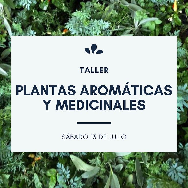Taller: plantas aromáticas y medicinales