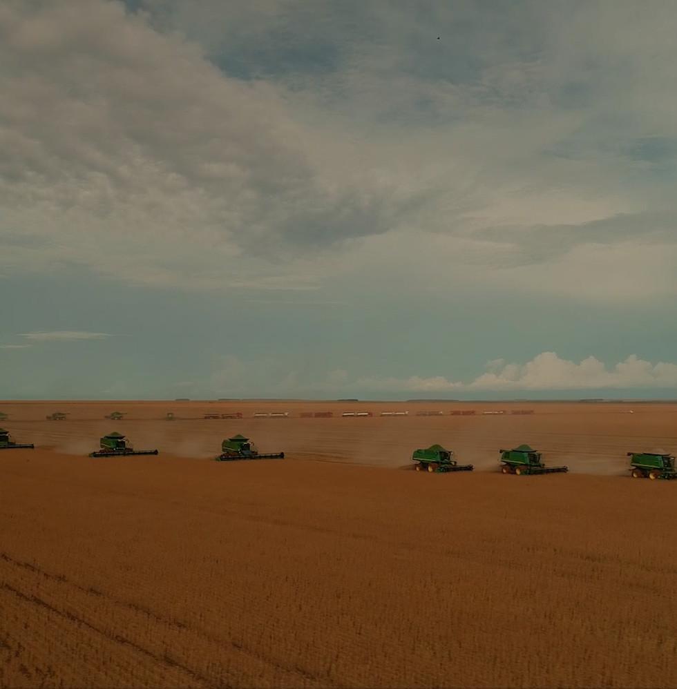 Fazenda da SLC Agrícola Soja Algodão e Milho no Brasil