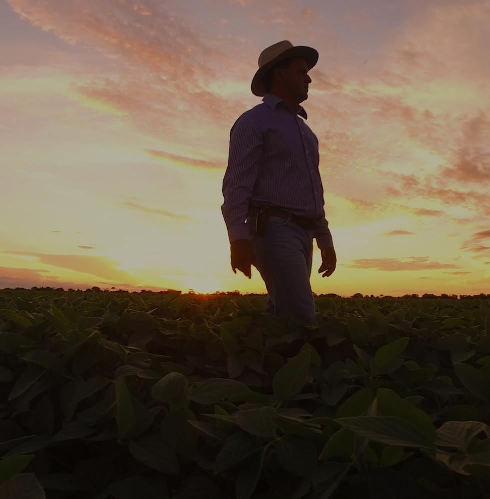 agricultor sojicultor na lavoura de soja sementes germinex