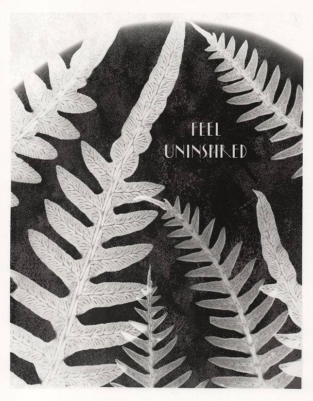 feel uninpired fern EDIT.jpg