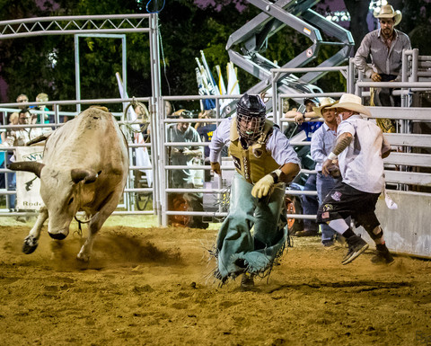 Ed Sward Photgraphy | Rodeo