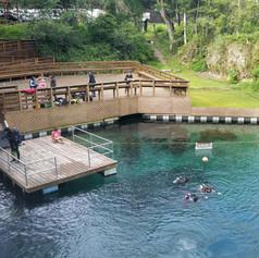 Blue Grotto Springs.jpeg