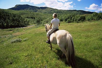 Jim Thorpe Horsebackriding