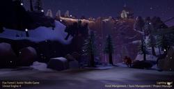 Fox Forest - Ash Kuehn