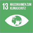 SDG_13.PNG