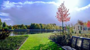 bench-clouds-daylight-233237.jpg