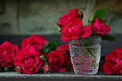 Rose Rosse In Acqua