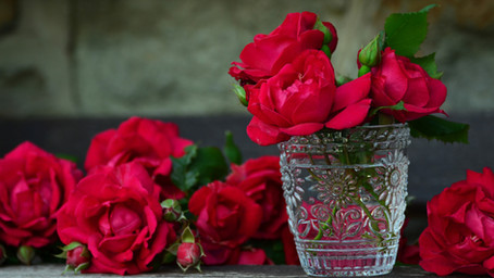 6 Things You Did Not Know About Rose Water