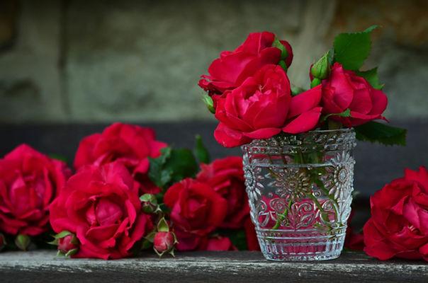 Roses rouges dans l'eau
