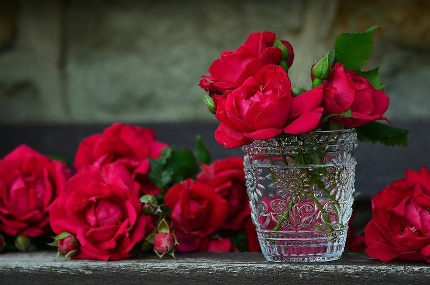 Rosas rojas en el agua