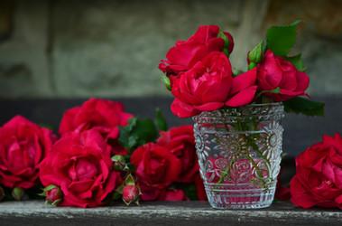 Rote Rosen im Wasser