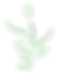 naturopathe et massage bien être Bourgoin Jallieu Nord Isere Rhone alpes rendez vous en ligne