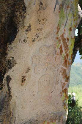 Huehuepiaxtla, eagle glyph