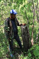Huehuepiaxtla, basalt column