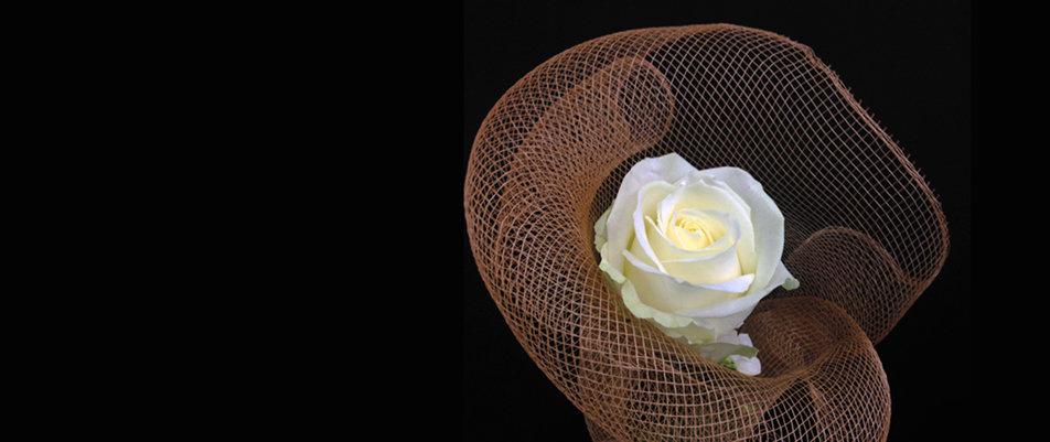 Rose blanche emballée dans notre tissus