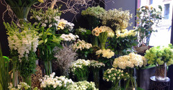 Beau mélange de nos fleurs blanches