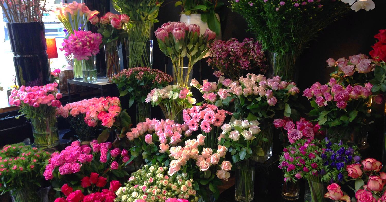"""Le coté """"rose"""""""