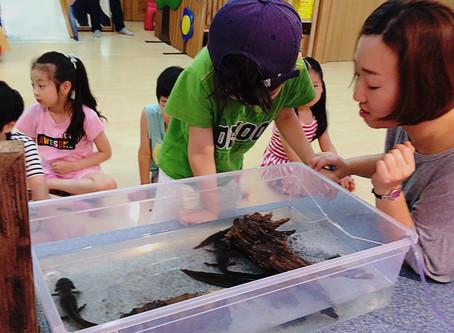 이동 동물원(생태교육)