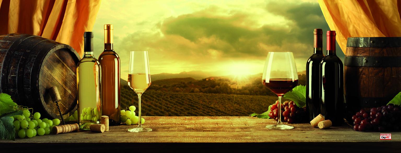 Plane - Wein Fenster  650x248 cm