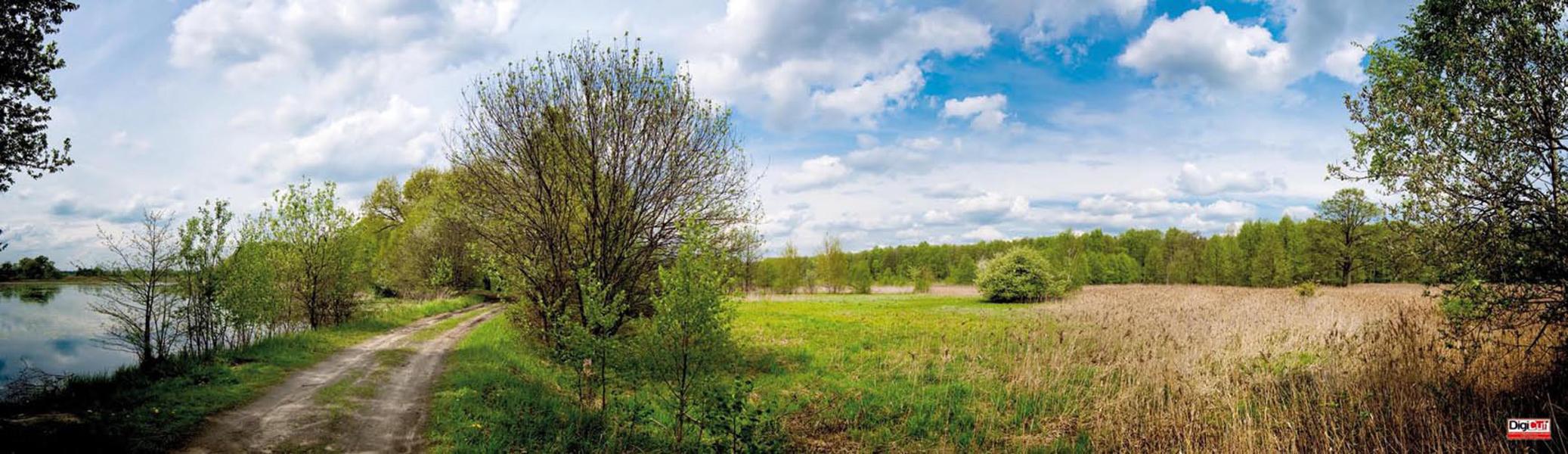 Plane Frühlingslandschaft 110x318 cm