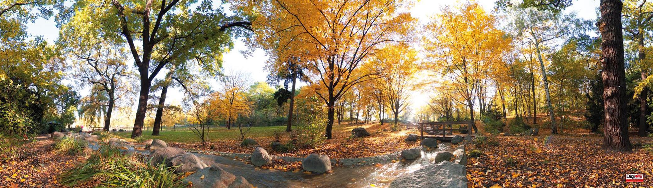 Plane Herbstwald 1100x300 cm