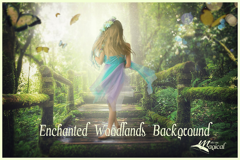 Enchanted Woodlands Background | Digital Background |Woodland Background |Forest