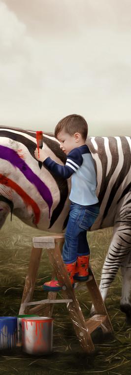 zebra plain background 3.jpg