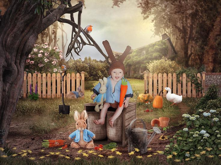 Peter Rabbit Digital Backdrop   Digital Background   easter digital Background