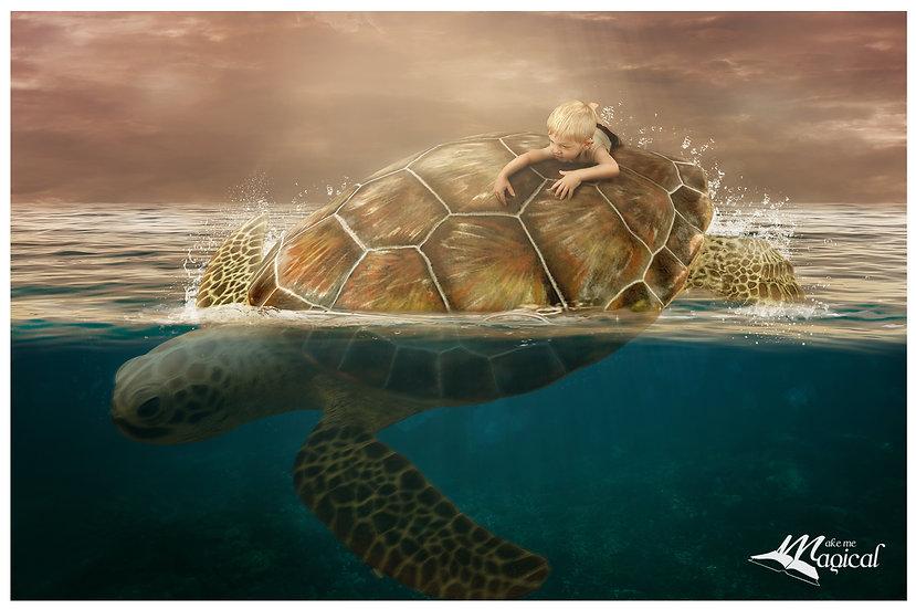 Turtle Backdrop | Turtle Background | Sea Turtle | Ocean Digital Backdrop