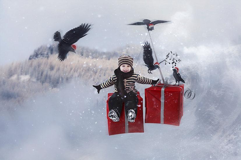 12 Days of Christmas - 4 Calling Birds Digtal Backdrop