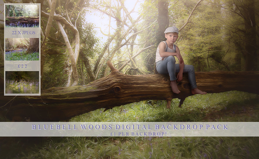 Bluebell digital backdrops, Makememagical, Bluebell woods, woodland digital back