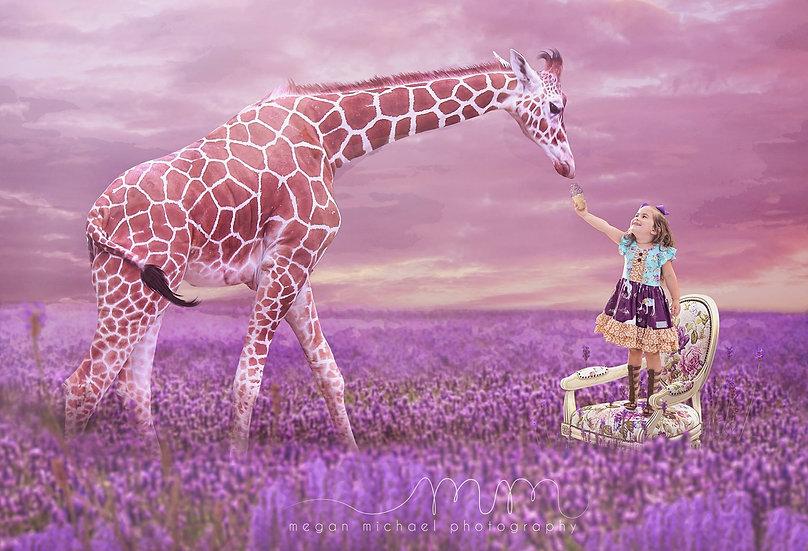 Lavender Field Background   Lavdender Digital Backdrop   Digital Backdrop
